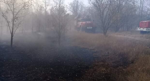 Лесные пожары бушуют в Ростовской и Воронежской областях
