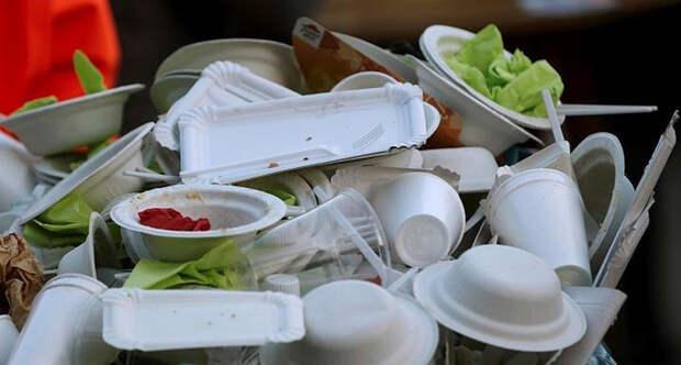 В России запретят пластиковую посуду. Правда и ложь