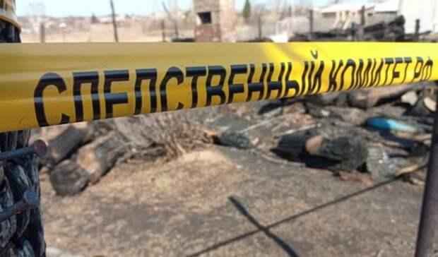 Названы предварительные причины пожара под Нижним Тагилом спятью погибшими детьми