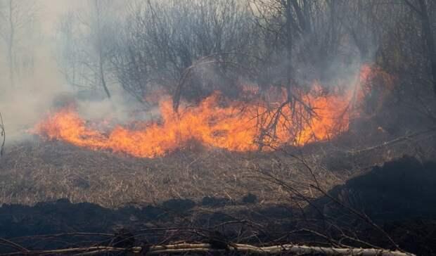 Заминувшие сутки вТюменской области потушили 42 пожара