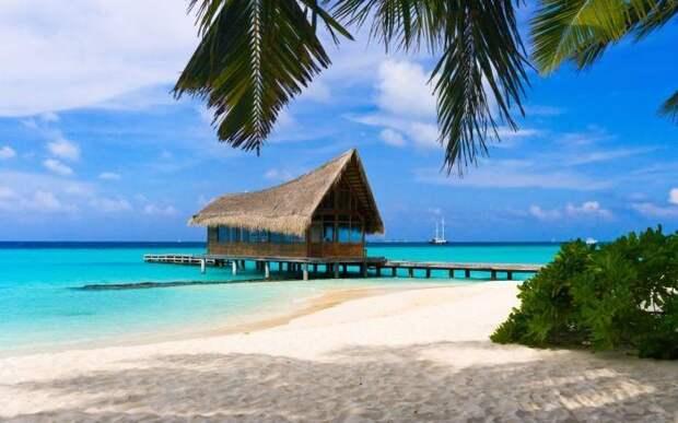 Чем заняться на Багамских островах (9 фото)