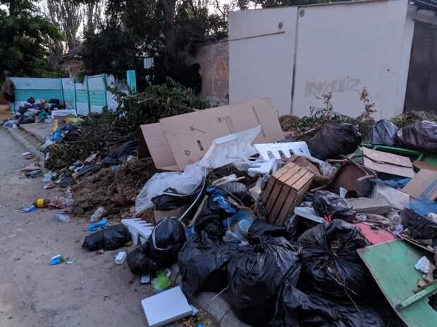 Жители Керчи жалуются на мусорные свалки в городе