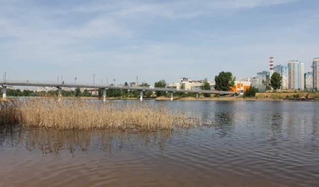Беда неприходит одна: Названо число погибших нанижегородских водоемах в этом году