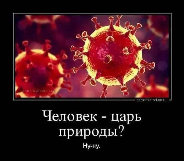 Демотиваторы про коронавирус с надписями. Подборка chert-poberi-dem-koronavirus-chert-poberi-dem-koronavirus-27230329102020-12 картинка chert-poberi-dem-koronavirus-27230329102020-12