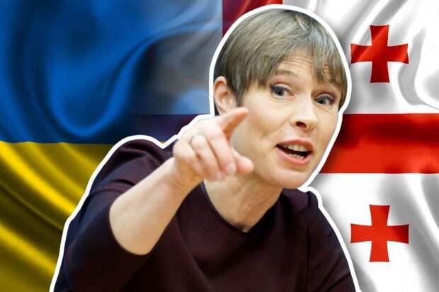 На Украине и в Грузии обвиняют президента Эстонии в «предательстве»