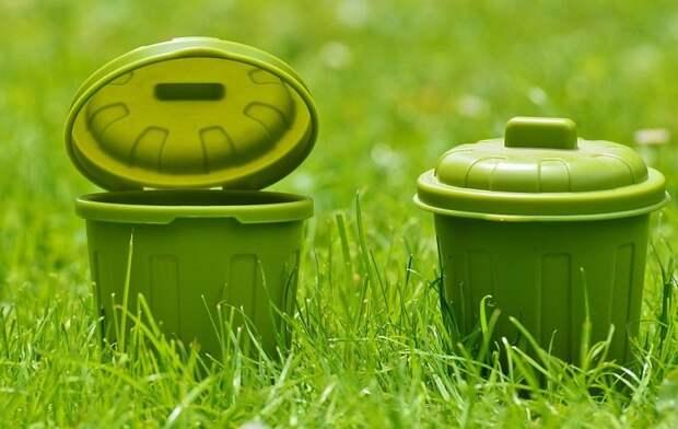 Жители Южного Медведкова теперь могут оставить заявку на вывоз мусора / Фото: pixabay.com