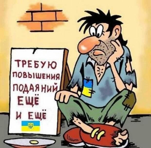 Слабоумная политика Украины шокировала Запад