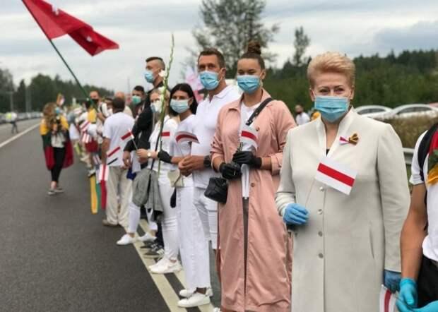 В какую ловушку попали прибалты, поддержав протесты в Белоруссии?