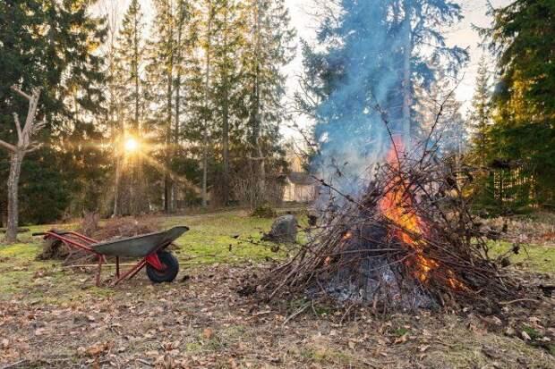 Сжигание растительности ранней весной