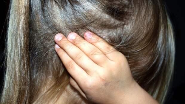 Полицейские разыскивают по горячим следам насильника девочки в Сочи