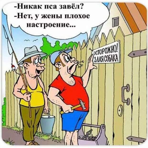Неадекватный юмор из социальных сетей. Подборка chert-poberi-umor-chert-poberi-umor-26470812052021-12 картинка chert-poberi-umor-26470812052021-12