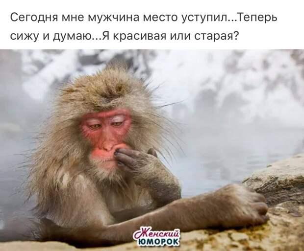 Многие люди мечтают одновременно о двух вещах: чтобы не было коррупции, и чтобы был такой знакомый, который мог бы всё порешать