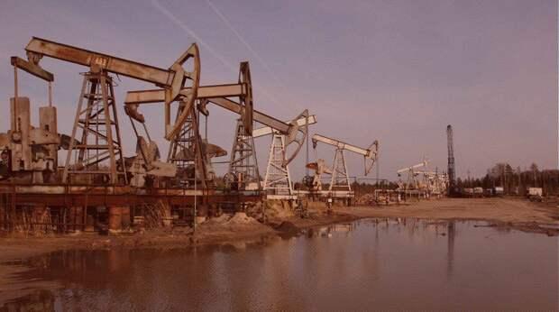 Нефтяник рассказал, сколько черного золота осталось в России
