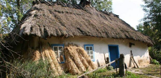 Украинский безгаз: «Аграрной сверхдержаве» предлагают перейти на солому