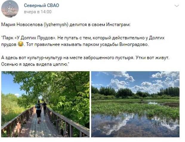 Фото дня: парк «У Долгих Прудов», где живут утки и цапли