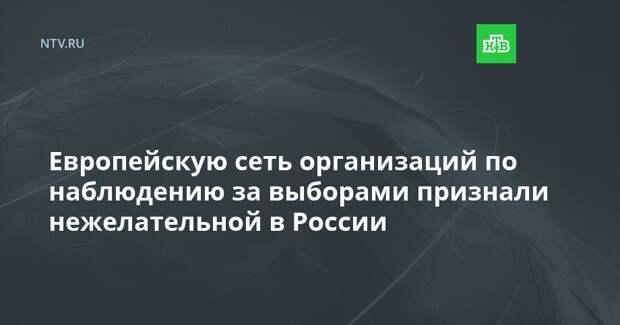 Европейскую сеть организаций по наблюдению за выборами признали нежелательной в России