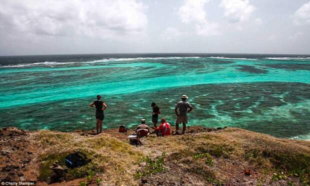 Гренадины