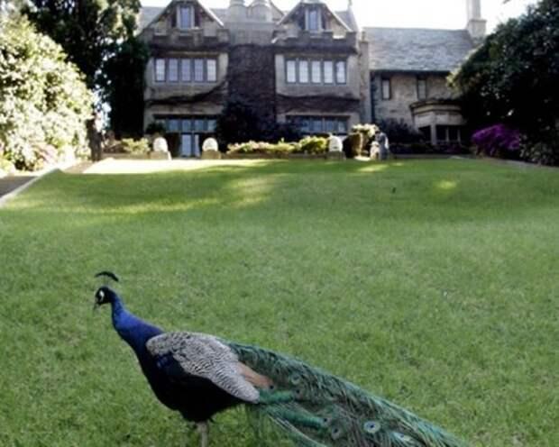 В Лос-Анджелесе за $100 млн продали особняк основателя журнала Playboy