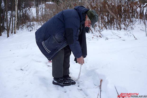Пенсионер используют «посадочную линию» – на ленту туалетной бумаги он в шахматном порядке приклеил семена морковки.