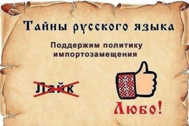 1449899879_1449749609_raznoobraznaya_4-60