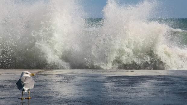 Жителей Крыма предупредили о серьезном ухудшении погоды в выходные