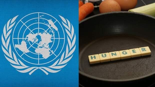 ООН сообщила о самом масштабном голоде на Земле за пять лет