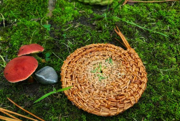 Обязательно попробуйте плести из сосновых игл! Экологично, просто и очень красиво👌Необычный подарок с моря💙