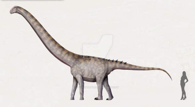 14 самых необычных динозавров, которые жили на территории России