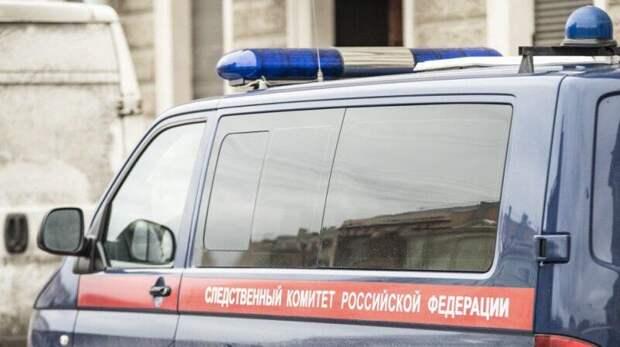 Дело о халатности возбудили после падения детей с лопнувшего батута в Барнауле