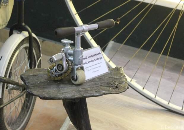 Палитра впечатлений из Углича: от авангарда и пчел до древних монастырей и велосипедов