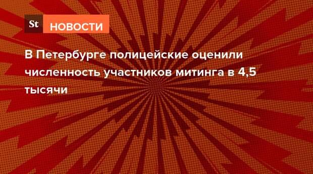 В Петербурге журналисты утверждают, что полиция применяет шокеры против митингующих