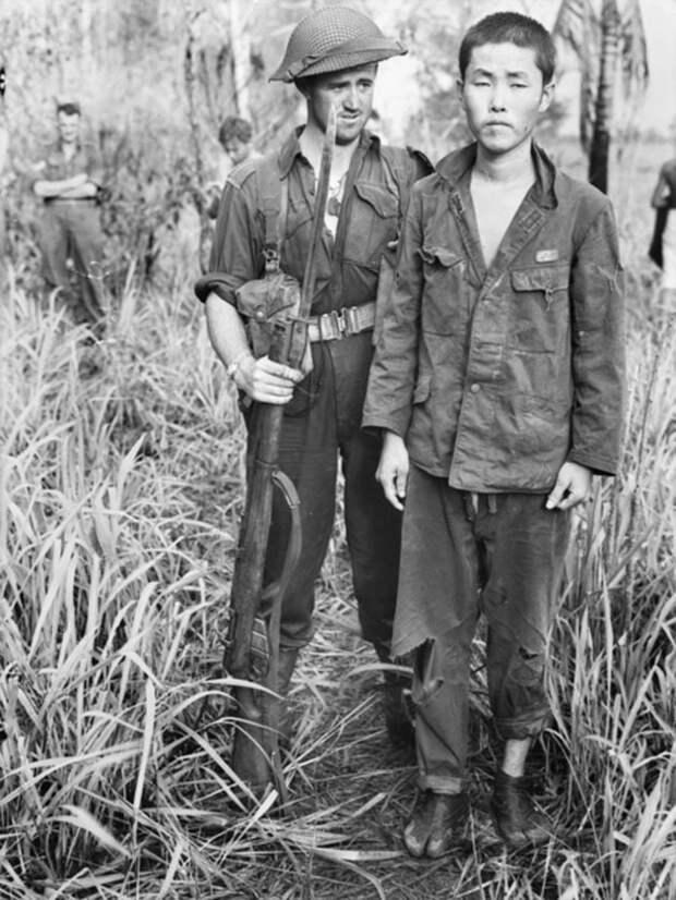 Японский солдат (судя по петлицам — «нитто-хей», рядовой 1-го класса), взятый в плен в долине реки Раму. Октябрь 1943 года Источник: awm.gov.au - «Адский остров»: трагедия 18-й японской армии | Военно-исторический портал Warspot.ru