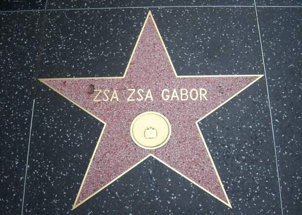 Звезда на Аллее Славы в Голливуде. / Фото: poetryschool.com