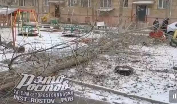 Огромный тополь рухнул надетскую площадку вРостове