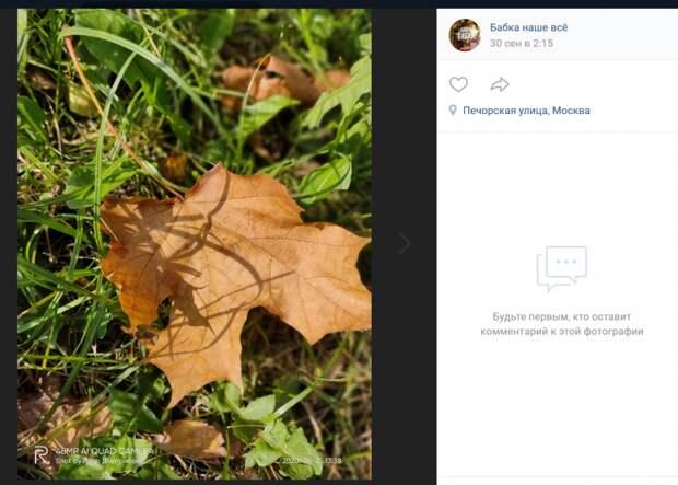 Фото для: осень на Печорской