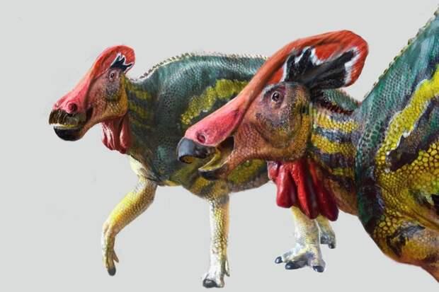 В Мексике найден «говорящий» динозавр
