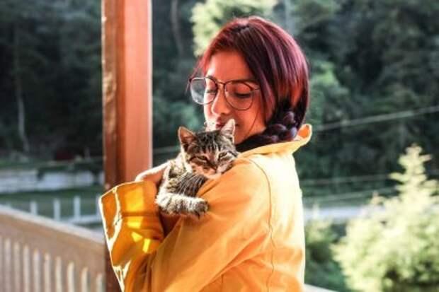 7 повадок кошки, покоторым очевидно, рада она гостю или нет