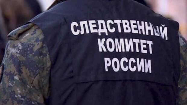 Расчлененный труп нашли в сумке под Петербургом