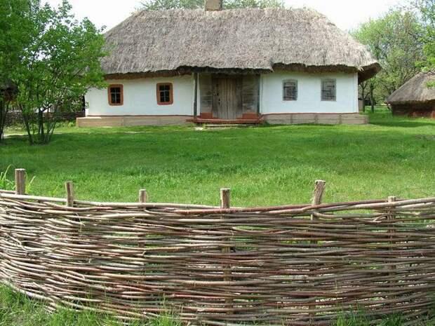 Делаем плетень на даче (подробная инструкция)