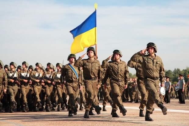 Горите в аду, кровавые украинские палачи! Молодёжь ЛНР попрощалась с 14-й бригадой ВСУ