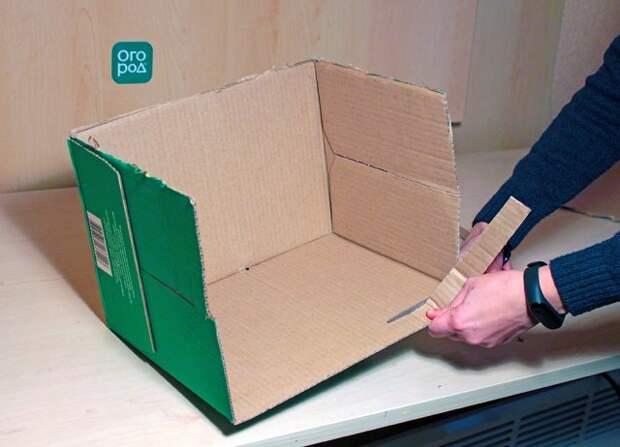 ящик для рассады своими руками мастер класс фото