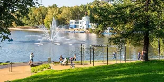 На проблемы со здоровьем во время жары жалуются 80% москвичей. Фото: Д. Гришкин mos.ru