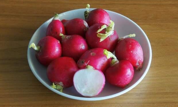 Редис не разочарует ни в плане вкуса, ни в плане полезности. /Фото: diet-health.info