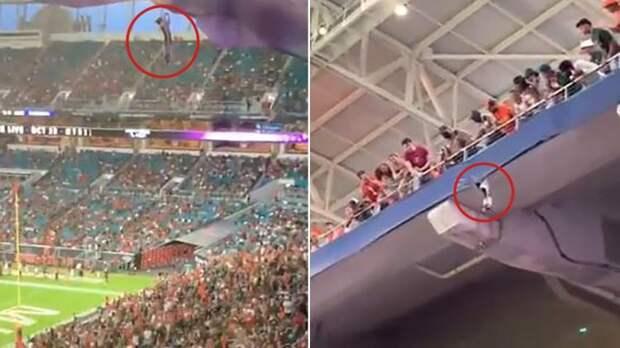 Весь стадион завопил от радости, когда спасли котика
