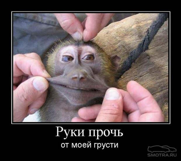 Картинки про усталость смешные (29 фото)