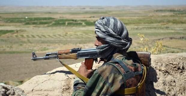 Тысяча афганских военных отступила в Таджикистан под натиском талибов