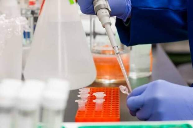 Ученые выявили способность коронавируса встраиваться в ДНК людей