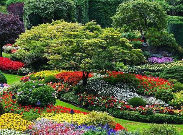 Красоты ландшафтного дизайна (видео)