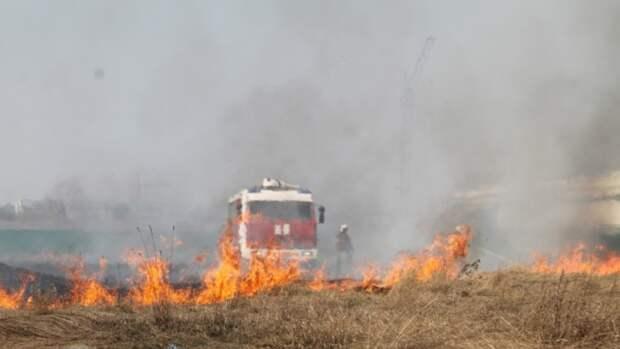 Жителей Алтайского края предупредили о сильном ветре и риске пожаров