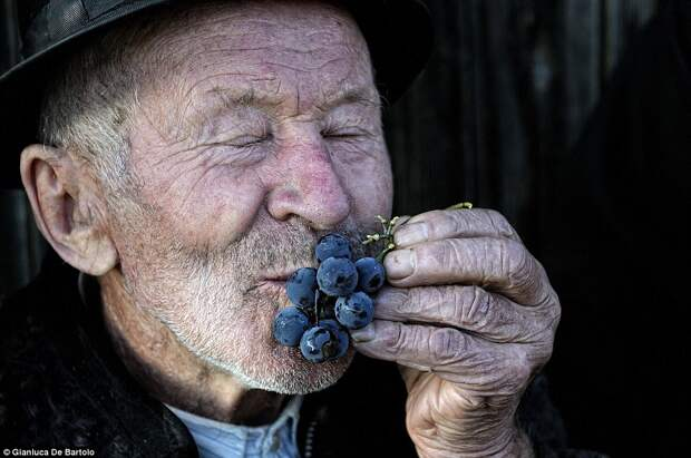 Румнынский фермер